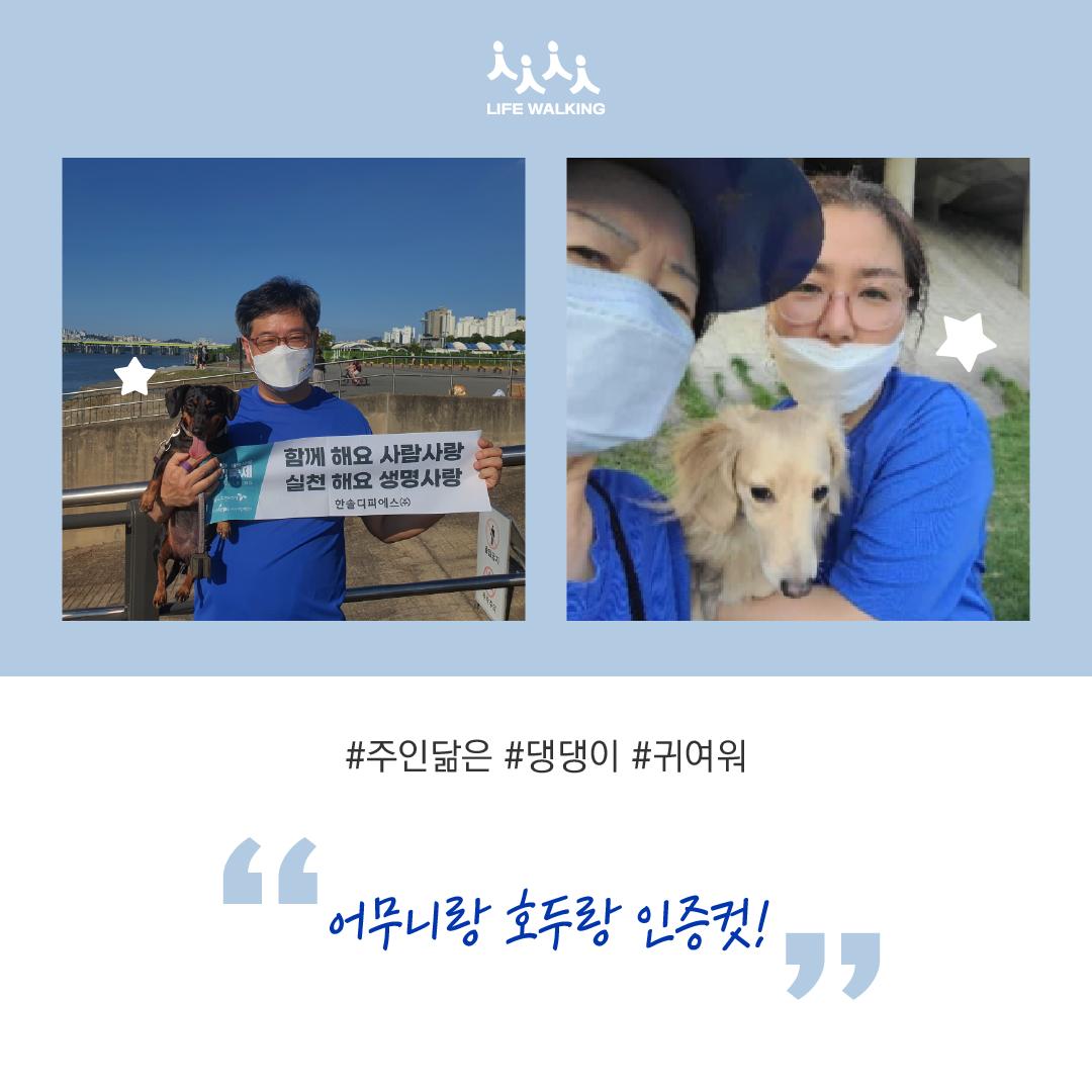 걷기축제 후기-04.png